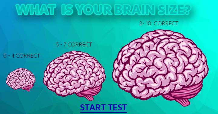 Test the size of your brain!